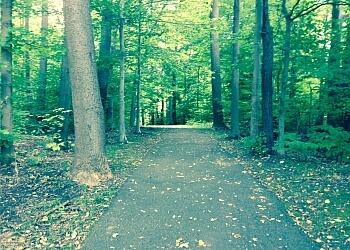 Buffalo hiking trail Walton Woods Park Trail