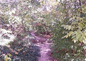 Springfield hiking trail Washington Park trail