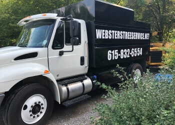 Nashville tree service Webster's Tree Service