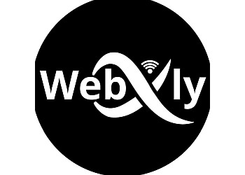 Grand Prairie web designer Webxly