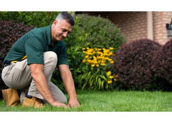 Hartford lawn care service Weed Man Lawn Care