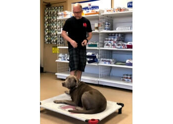 Memphis dog training West Tennessee K9