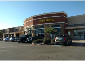 Surprise veterinary clinic White Tanks Animal Hospital & Grooming