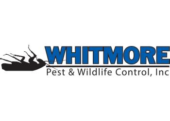 Denver pest control company Whitmore Pest & Wildlife Control