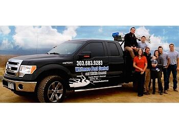 Denver pest control company Whitmore Pest & Wildlife Control, Inc.