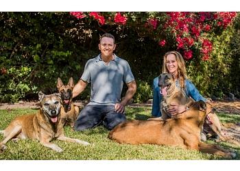 San Diego dog training WHO'S WALKING WHO