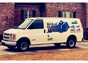 Lexington house cleaning service Wildcat Clean Team