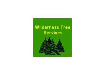 Victorville tree service Wilderness Tree Services