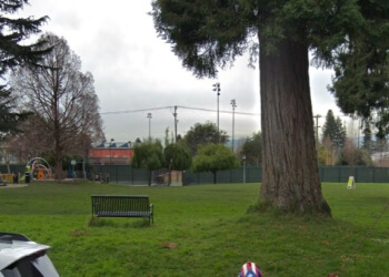 Berkeley public park Willard Park