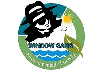 Miami chimney sweep Window Gang