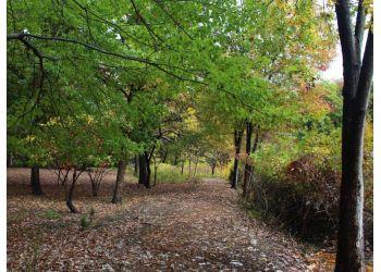 Alexandria hiking trail Winkler Botanical Preserve