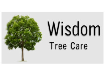 Fort Collins tree service Wisdom Tree Care