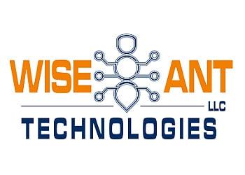 Brownsville web designer Wise Ant Technologies, LLC