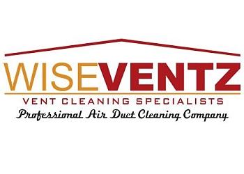Gilbert chimney sweep Wiseventz Vent
