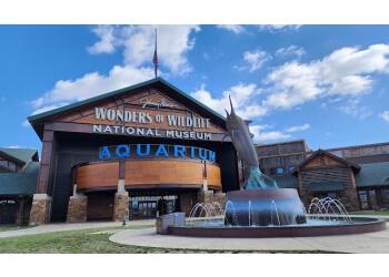 Springfield places to see Wonders Of Wildlife National Museum & Aquarium