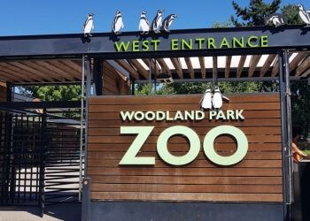 Seattle places to see Woodland Park Zoo
