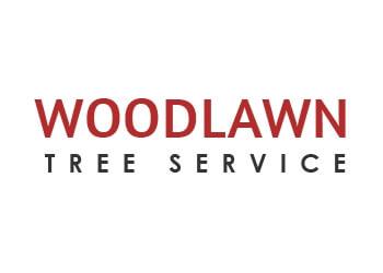 Alexandria tree service Woodlawn Tree Service