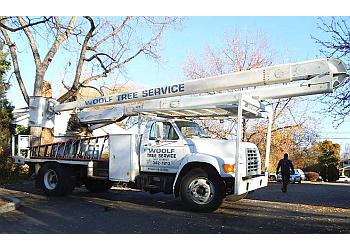 Boise City tree service Woolf Tree Service Inc.