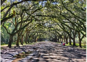 3 Best Hiking Trails In Savannah Ga Expert Recommendations