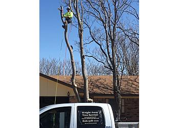 Amarillo tree service Wright Away Tree Service