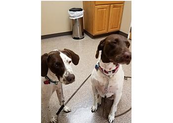 3 Best Veterinary Clinics in Lincoln, NE - Expert ...