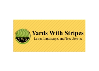 Clarksville lawn care service Yards With Stripes