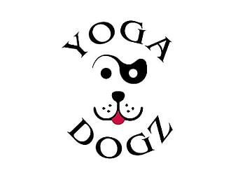 Winston Salem yoga studio Yoga Dogz Hot Hatha Yoga
