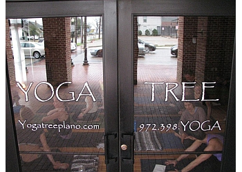 Plano yoga studio Yoga Tree