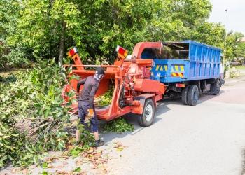 Yonkers tree service Yonkers Tree Pros