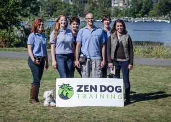 Boston dog training Zen Dog Training