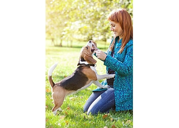 San Diego dog walker Zen Pet