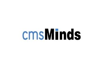 Durham web designer cmsMinds