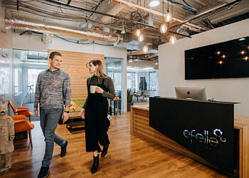 Seattle web designer efelle creative