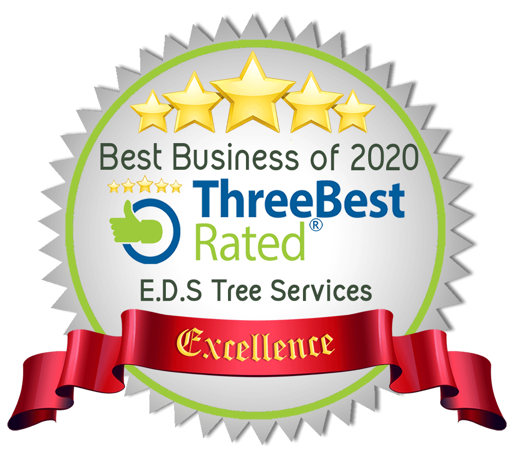 Best Tree services in Lincoln